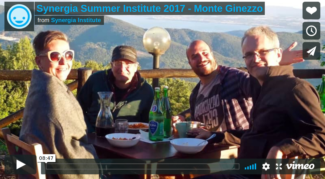 Screenshot_2019-02-24 Synergia Summer Institute 2017